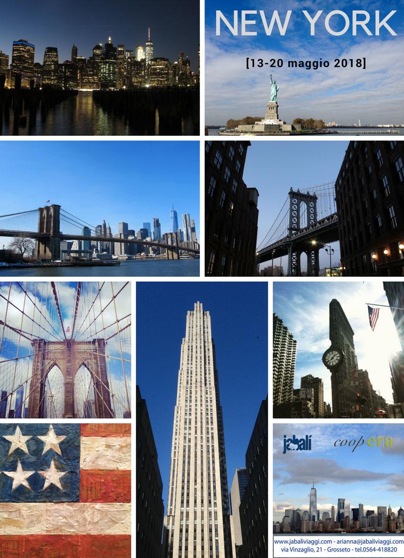 Viaggio guidato a New York